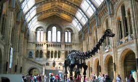 Visita a los museos de Londres